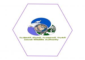 Saudi Wildlife Authority الهيئة السعودية للحياة الفطرية